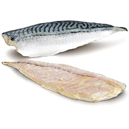 Caballa filete 140/160Gr