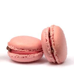 Macarons surtido 576 Uds. Masdeu